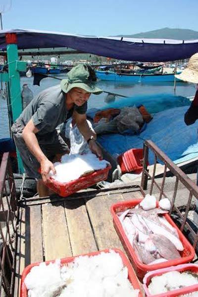 Khan hiếm hải sản cận tết - 2