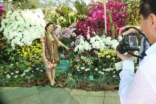 Chùm ảnh: Đà Lạt rực rỡ sắc hoa - 11