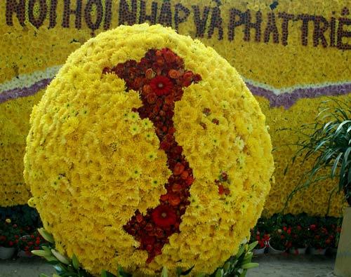 Chùm ảnh: Đà Lạt rực rỡ sắc hoa - 3
