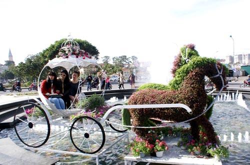 Chùm ảnh: Đà Lạt rực rỡ sắc hoa - 5