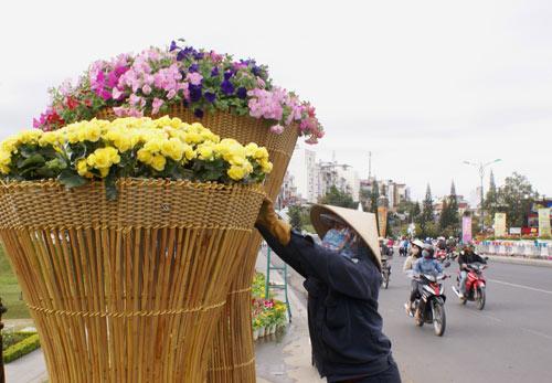 Chùm ảnh: Đà Lạt rực rỡ sắc hoa - 6
