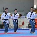 Thể thao - Thành lập đội biểu diễn Taekwondo Việt Nam