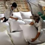 Thị trường - Tiêu dùng - Xuất khẩu gạo năm 2013 đạt 6,61 triệu tấn