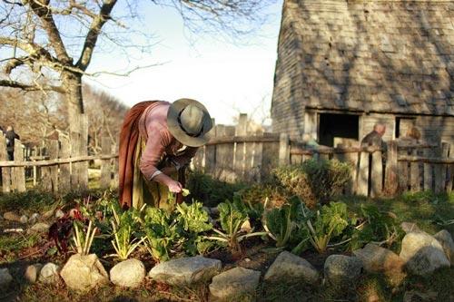 """Ghé thăm """"ngôi làng thế kỷ 17"""" Plimoth Plantation - 4"""