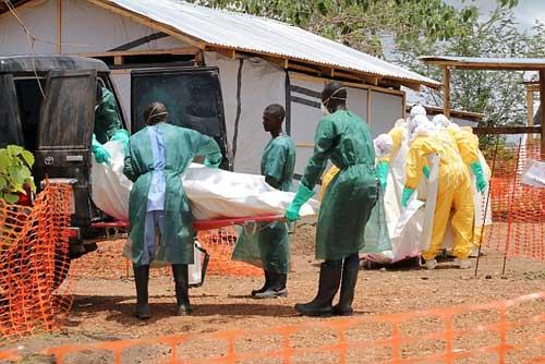Châu Âu trước nguy cơ bị Ebola tấn công - 2