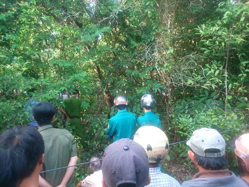 Xác định thời điểm thiếu nữ 19 tuổi chết trong rừng - 1