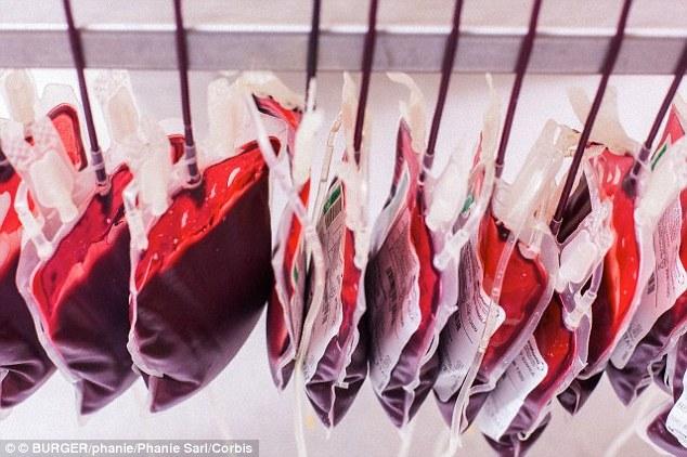 TQ: Bố mẹ hiến máu để đổi điểm cho con - 2