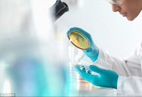 Nuôi cấy thành công dương vật trong phòng thí nghiệm - 1