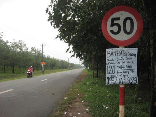 """Nhà đất """"nóng"""" theo sân bay Long Thành - 1"""