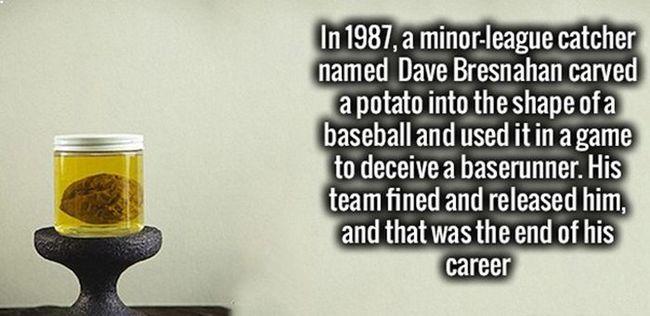 3. Năm 1987, một vận động viên bóng chày tên Dave Bresnahan đã dùng một củ khoai tây đã được gọt thành hình quả bòng chày để lừa một người ở vị trí chạy gôn. Cả đội đã phạt và đuổi anh ta, sự nghiệp của anh ta kết thúc từ đó.