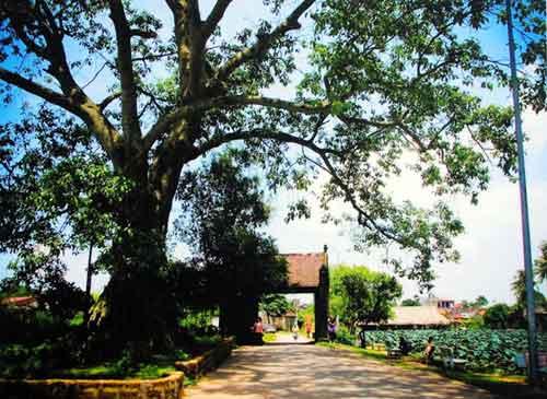 Ngắm những khoảnh khắc đẹp về Hà Nội qua 60 năm - 16