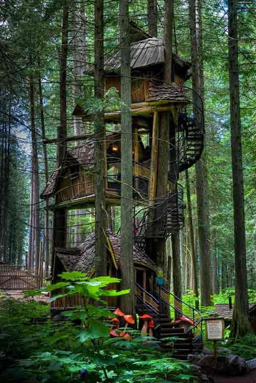 Những ngôi nhà đẹp hơn cả tưởng tượng - 1