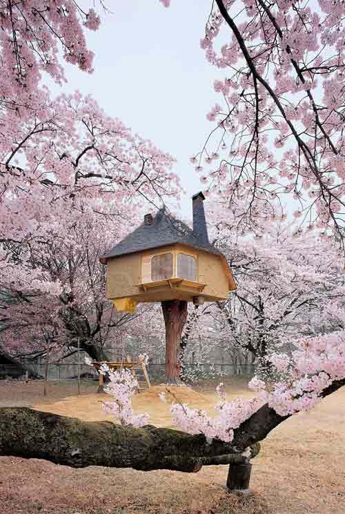 Những ngôi nhà đẹp hơn cả tưởng tượng - 13