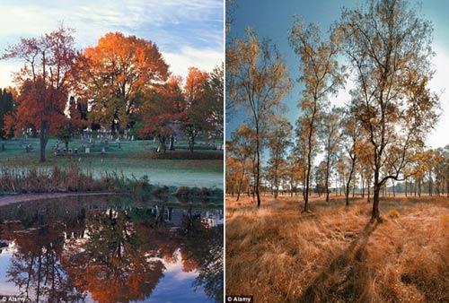 Mùa thu ở những danh lam nổi tiếng nhất thế giới - 6