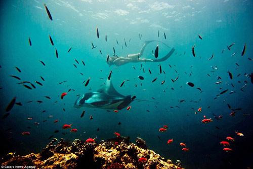 Đảo rác khổng lồ phía sau thiên đường biển Maldives - 14