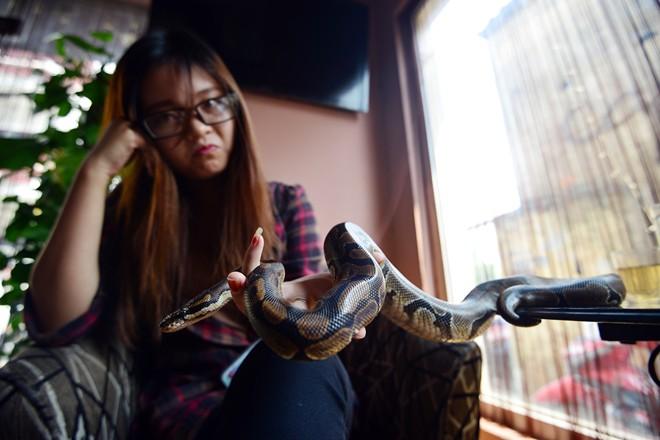 Nữ sinh Báo chí với sở thích ''đá lưỡi'' hôn trăn - 4