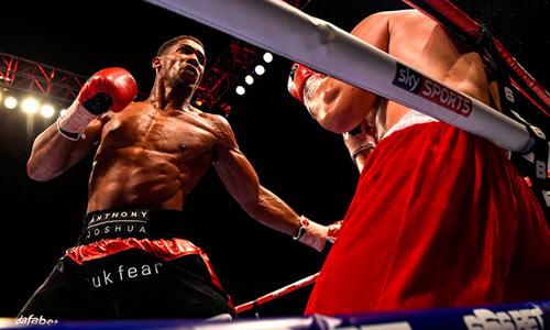 Boxing: Võ sỹ trẻ đang lên thách thức đàn anh - 1