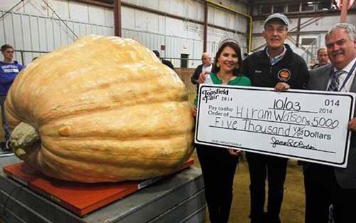 Những quả bí ngô khổng lồ nhất thế giới - 9
