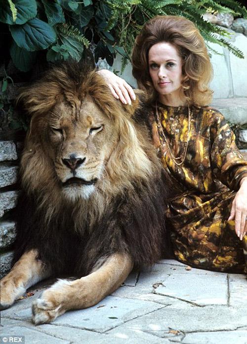 Siêu sao hối hận vì để con gái ngủ với sư tử - 3