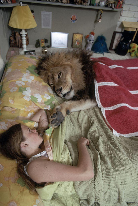 Siêu sao hối hận vì để con gái ngủ với sư tử