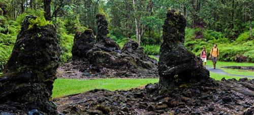 Khám phá rừng cây nham thạch độc đáo ở Hawaii - 2