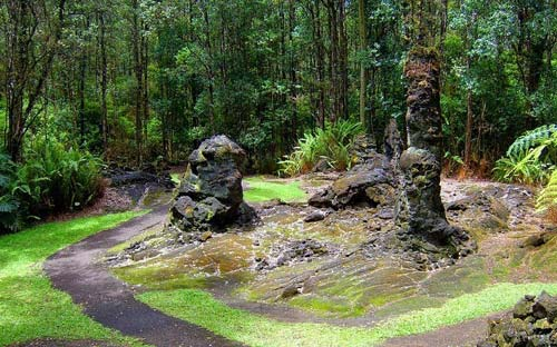 Khám phá rừng cây nham thạch độc đáo ở Hawaii - 4
