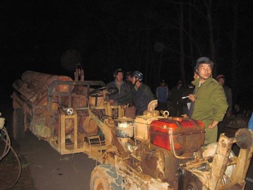 Bắt 4 xe vận chuyển gỗ lậu trong đêm - 2