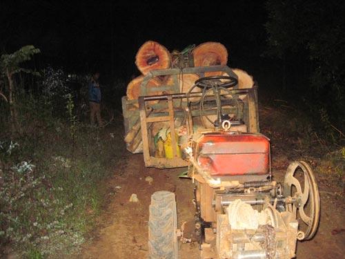 Bắt 4 xe vận chuyển gỗ lậu trong đêm - 3