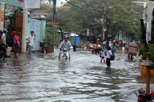 TP.HCM: Học sinh lội nước về nhà sau tan học - 2