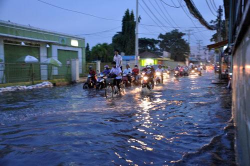 TP.HCM: Học sinh lội nước về nhà sau tan học - 7