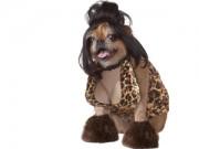 Chết cười với chó mèo đua nhau hóa trang đón Halloween