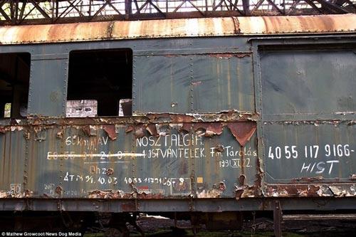 Bên trong nghĩa địa tàu hỏa ở châu Âu - 3