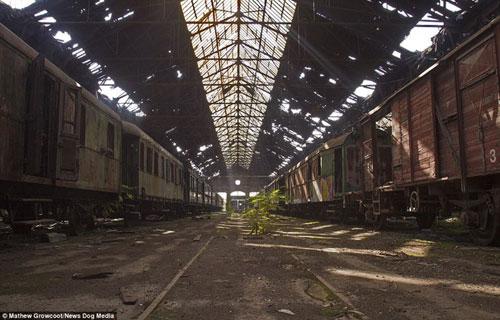 Bên trong nghĩa địa tàu hỏa ở châu Âu - 4