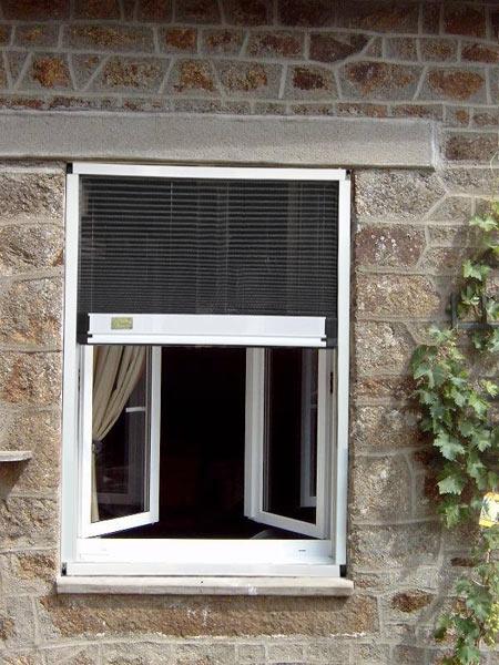 Giải pháp chống muỗi an toàn cho ngôi nhà của bạn - 1
