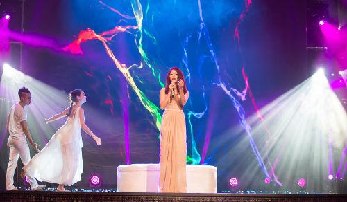 Khán giả hò hét yêu cầu Chế Linh hát tiếp - 5