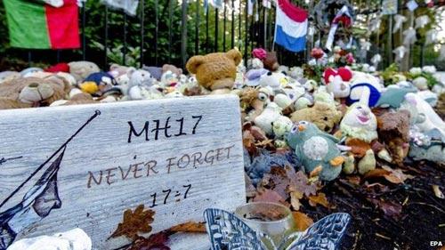 Vụ MH17: Nỗ lực tìm kiếm 9 nạn nhân vẫn đang mất tích - 1