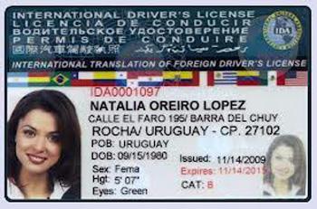 VN sẽ cấp bằng lái xe sử dụng được tại nhiều quốc gia - 1