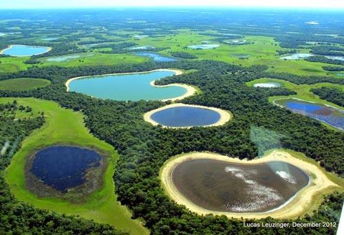 Chiêm ngưỡng vẻ đẹp đầm lầy nước ngọt lớn nhất TG - 1