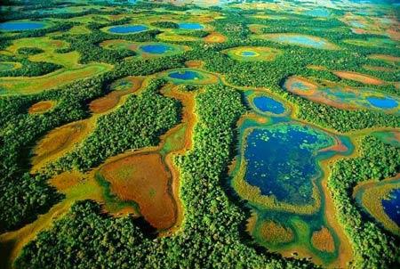 Chiêm ngưỡng vẻ đẹp đầm lầy nước ngọt lớn nhất TG - 3