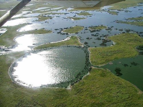 Chiêm ngưỡng vẻ đẹp đầm lầy nước ngọt lớn nhất TG - 7