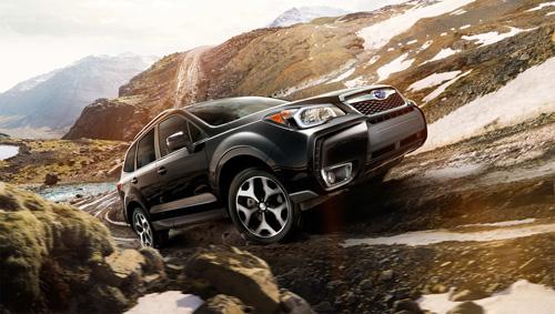Cơ hội trải nghiệm siêu phẩm SUV Subaru trong tháng 11 - 1