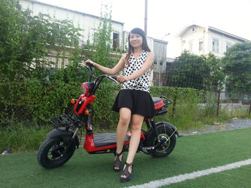 Những hãng xe nổi bật trên thị trường xe đạp điện - 4