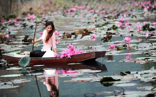 Vãn cảnh chùa Hương mùa hoa Súng - 1
