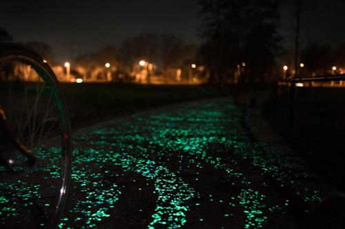 Đẹp ngỡ ngàng con đường phát sáng ở Hà Lan - 8