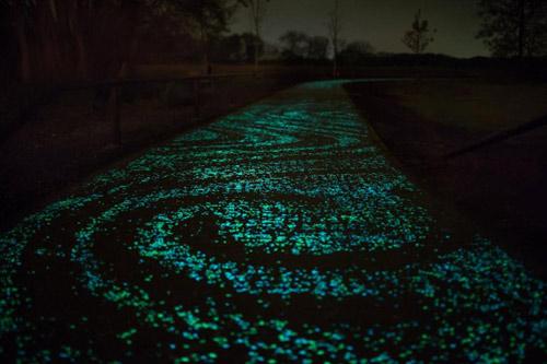 Đẹp ngỡ ngàng con đường phát sáng ở Hà Lan - 3