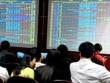 """Vn-Index xuống dốc, nhà đầu tư đẩy mạnh """"bắt đáy"""""""