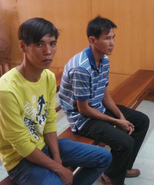 Bi hài hai người vào tù vì khiêng cây mai giúp kẻ trộm - 1