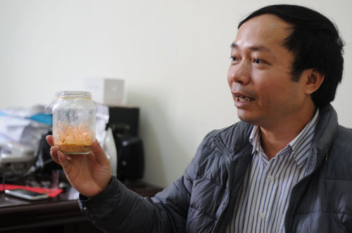 VN nghiên cứu thành công đông trùng hạ thảo giá 7 triệu/kg - 2