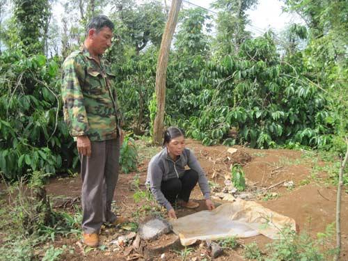 Đắk Lắk: Bé gái mới sinh bị bỏ rơi trên rẫy cà phê - 1