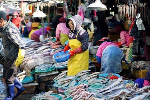 Đến thăm chợ hải sản Jagalchi nổi tiếng xứ Hàn - 2